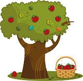Vector illustration of apple tree.