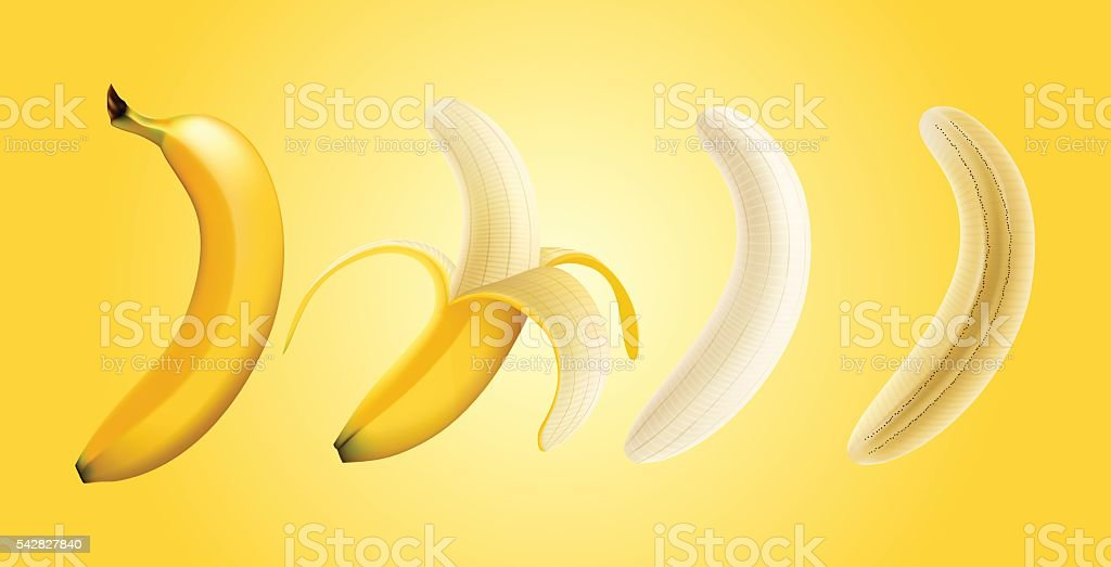 Vector illustration of banana peeled banana and slice banana, transparent vector art illustration