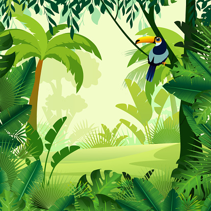 Jungle Vector Free Ai Svg And Eps