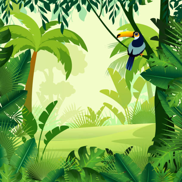vector illustration of beautiful background morning jungle. bright jungle with ferns and flowers. for design game, websites and mobile phones, printing. - jungle stock illustrations