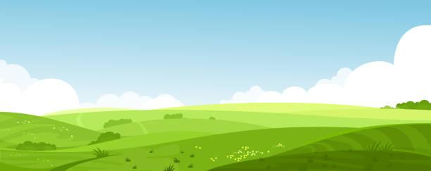 ilustrações, clipart, desenhos animados e ícones de vector a ilustração de verão linda paisagem com um amanhecer, colinas verdes, céu azul de cor brilhante, fundo do país em banner de estilo cartoon plana de campos. - exterior
