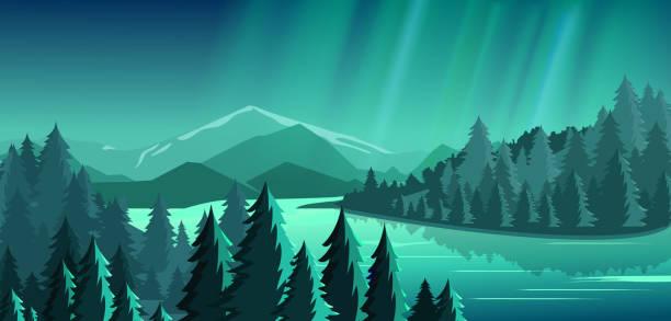 bildbanksillustrationer, clip art samt tecknat material och ikoner med vektorillustration av vacker utsikt med skog, berg, sjö och aurora blå himmel med en massa stjärnor, norrsken. resor-koncept, att utforska världen. - northern lights