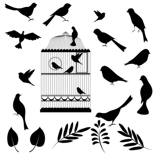 stockillustraties, clipart, cartoons en iconen met vector illustration, of bird cage - neerstrijken