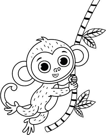 흑인과 백인 귀여운 원숭이의 벡터 그림입니다 검은색에 대한 스톡 벡터 아트 및 기타 이미지