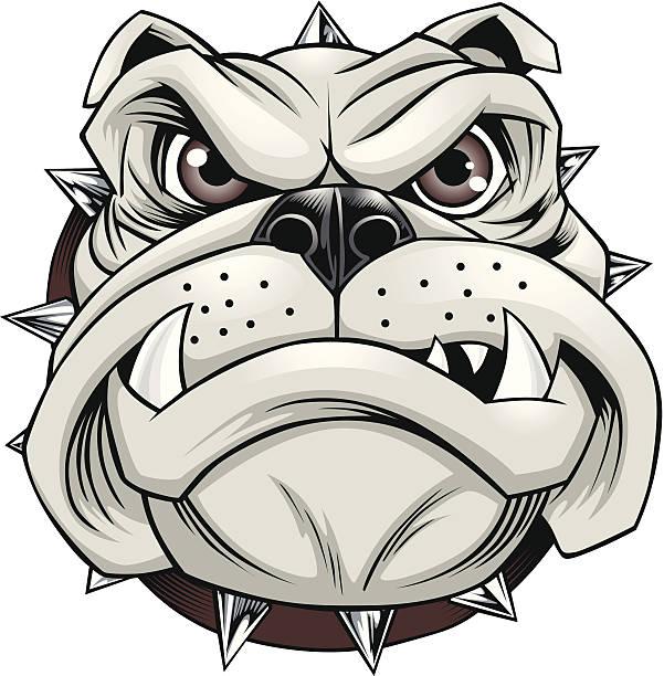 Vector illustration of bulldog with spiked collar vector art illustration