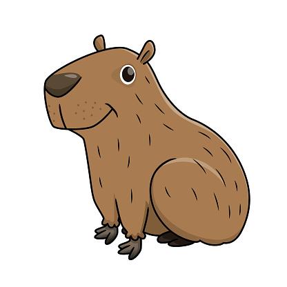 Vector illustration of capybara isolated on white background.