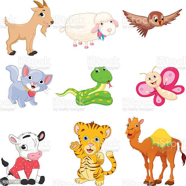 Vector illustration of cartoon animals vector id629111968?b=1&k=6&m=629111968&s=612x612&h=q50sqtz9jcm18wzienzzozdwuzf8nwlnpju1bggzuxs=