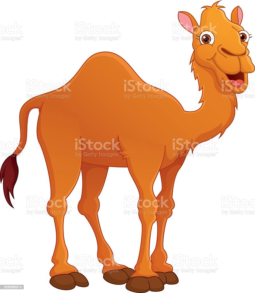 royalty free camel clip art vector images illustrations istock rh istockphoto com camel clipart images camel clip art how to draw
