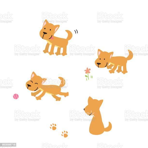 Vector illustration of cartoon dogs vector id850688716?b=1&k=6&m=850688716&s=612x612&h= hmnru1ttdrgxokeinbsouvu9l28poscq1lefn1ey1c=