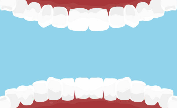 ilustrações de stock, clip art, desenhos animados e ícones de vector illustration of cartoon mouth inside with white teeth. dental hygiene background in flat style on blue color background. - boca suja