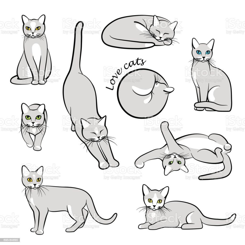 Vector illustration of cats vector art illustration