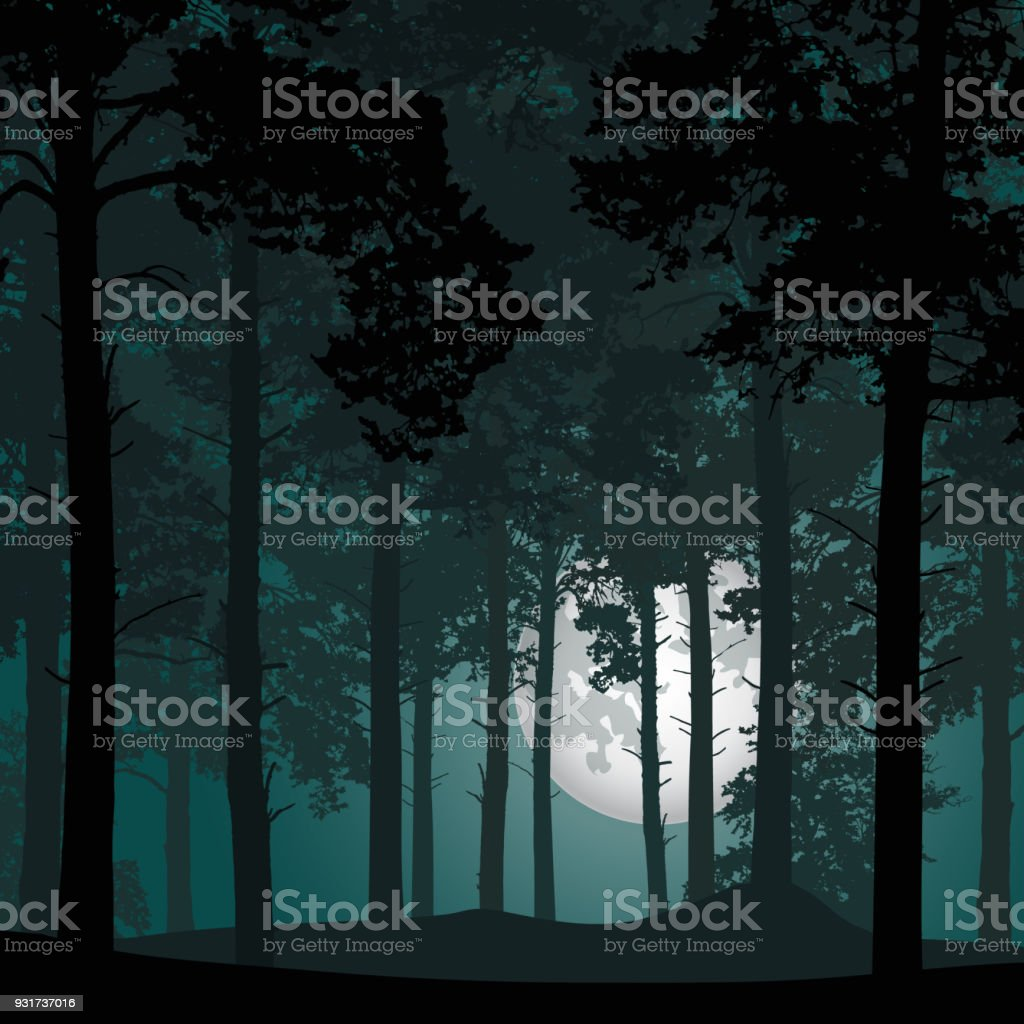 vector illustration of coniferous forest under night sky with stars and moon full moon royalty-free vector illustration of coniferous forest under night sky with stars and moon full moon stock illustration - download image now