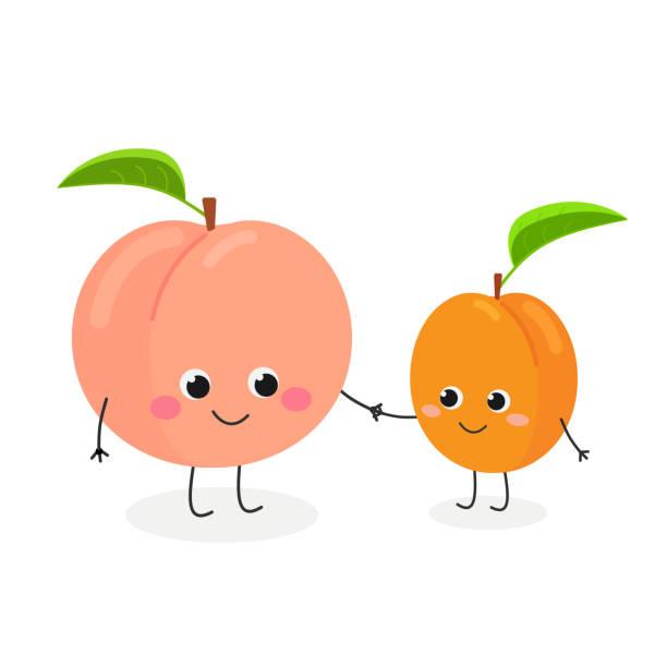 illustrazioni stock, clip art, cartoni animati e icone di tendenza di vector illustration of cute cartoon peach and apricot - pesche bambino