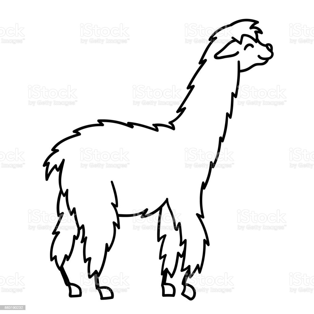 royalty free cute llama clip art clip art vector images rh istockphoto com llama clip art free llama clipart black and white