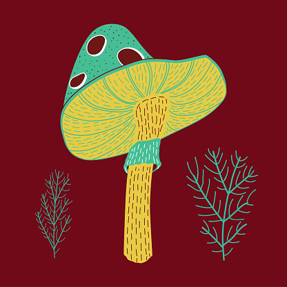 Vector illustration of cute hand drawn fly agaric
