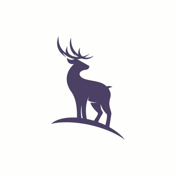 Vector illustration of Deer logo Vector illustration of Deer logo stag stock illustrations