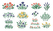Vector illustration of different flower arrangements. Garden decorative plants bouquets. Collection of beautiful spring and summer herbs and flowers.