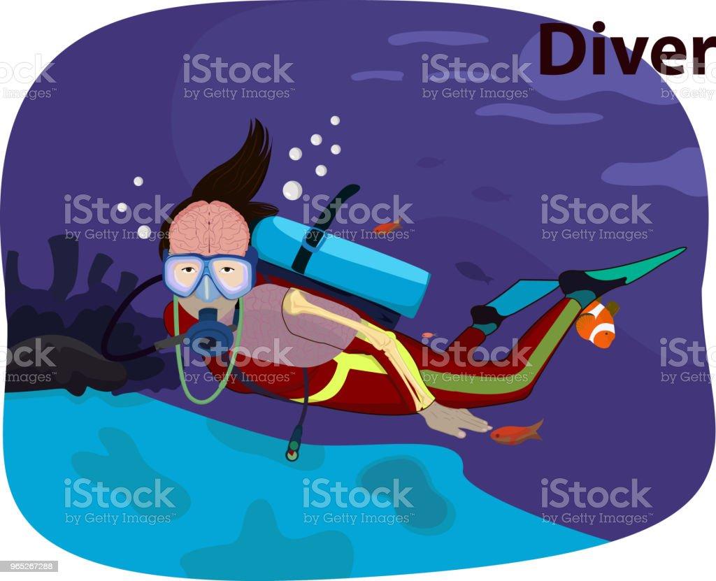 Vector illustration of Diver human anatomy vector illustration of diver human anatomy - stockowe grafiki wektorowe i więcej obrazów akwalung royalty-free
