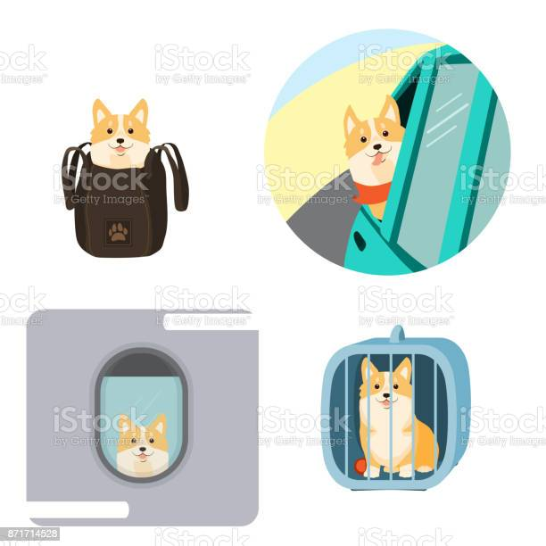 Vector illustration of dog in a bag in pet cage carriage of dogs on vector id871714528?b=1&k=6&m=871714528&s=612x612&h=rrejgfben882io3sri7awjfrpwyjoxncqiu oacmhxm=