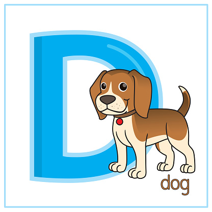 Vector illustration of Dog isolated on a white background. With the capital letter D for use as a teaching and learning media for children to recognize English letters Or for children to learn to write letters Used to learn at home and school.