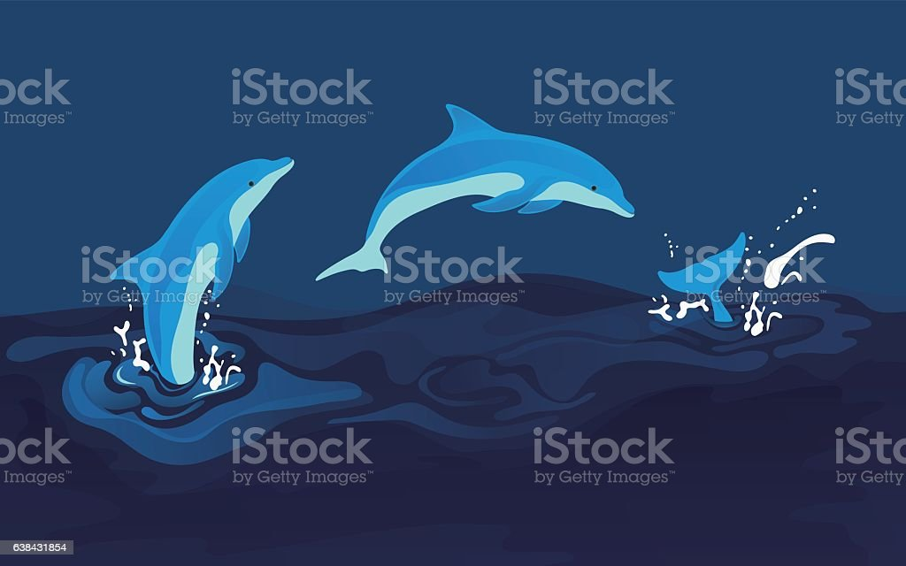 Vector illustration of dolphins