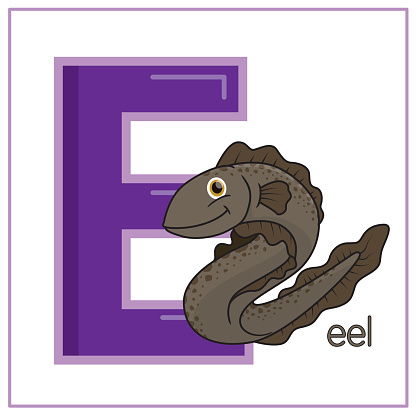 Vector illustration of Eel isolated on a white background. With the lower case alphabet letter E for use as a teaching and learning media for children to recognize English letters Or for children to learn to write letters Used to learn at home and school.