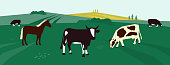 Background for farming or livestock company. Vector illustration of cows and horse in pasture. Farm animals on agricultural field. Rural landscape with dairy cattle. Design for flyer, poster, banner.