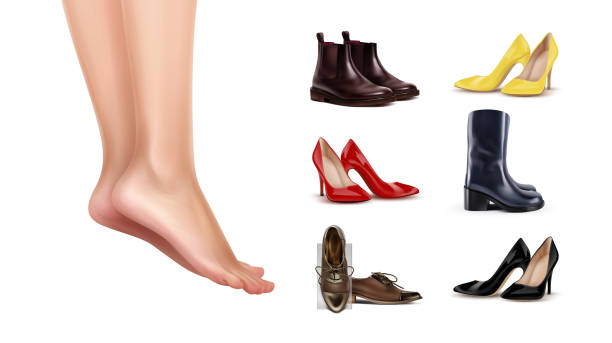 Vector illustration of female feet standing on finger toes and collection of different shoes on background Vector illustration of female feet standing on finger toes and collection of different shoes on white background shoe stock illustrations