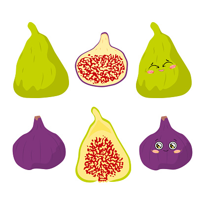 Vector illustration of figs of different color whole and half on a white background in a flat style. Bright set for design.
