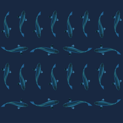 Vector illustration of Fishes,Top View and High detailed Line artwork.
