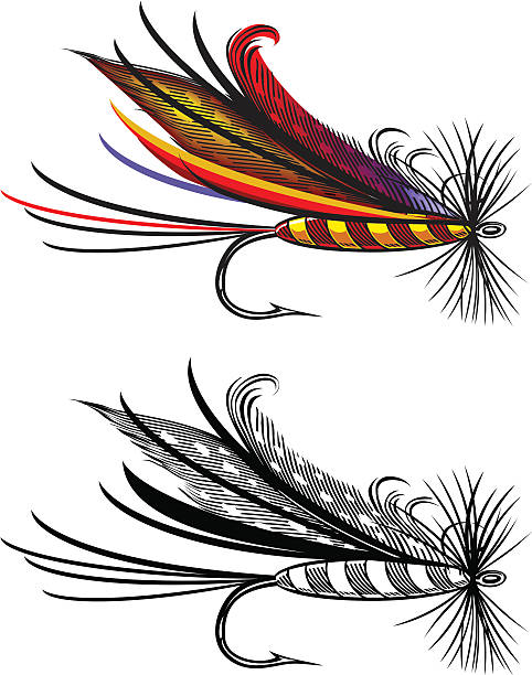 vektor-illustration von angeln fly - angelhaken stock-grafiken, -clipart, -cartoons und -symbole