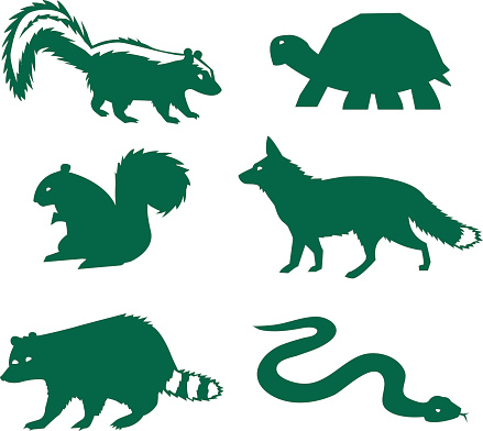 Vector illustration of forest animals