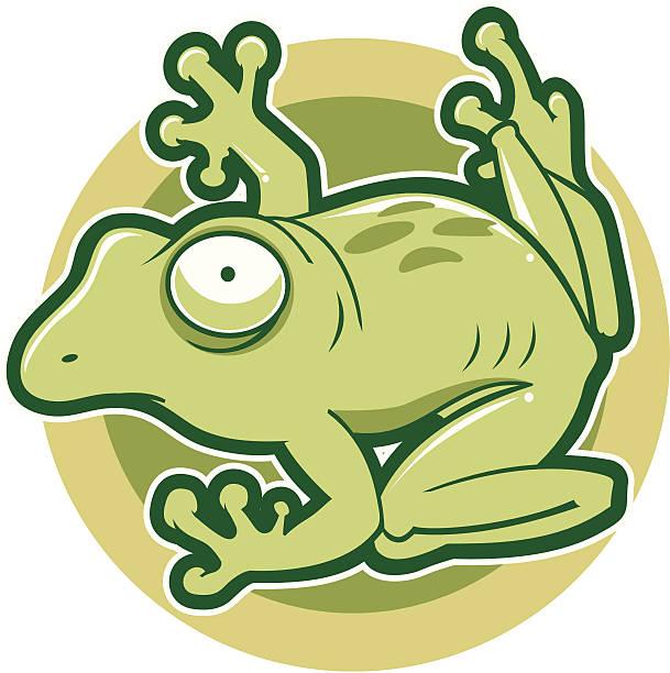 Best Bullfrog Illustrations, Royalty-Free Vector Graphics ...