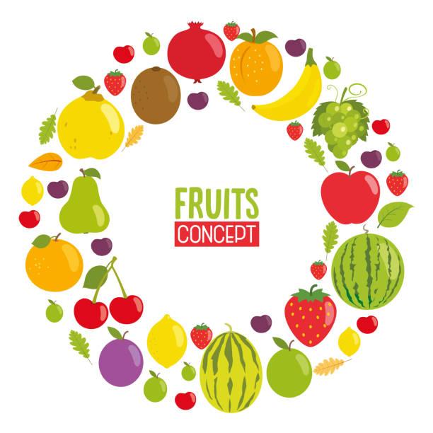 vektor-illustration von früchte-konzeption - pflaumenkuchen stock-grafiken, -clipart, -cartoons und -symbole