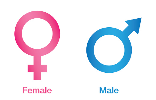 vector illustration of gender icon man and woman sex symbol gender icon male and female symbol gender symbol pink and blue icon stock illustration download image now istock vector illustration of gender icon man and woman sex symbol gender icon male and female symbol gender symbol pink and blue icon stock illustration download image now istock