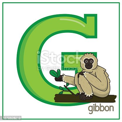Vector illustration of Gibbon isolated on a white background. With the capital letter G for use as a teaching and learning media for children to recognize English letters Or for children to learn to write letters Used to learn at home and school.