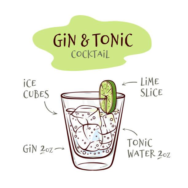 stockillustraties, clipart, cartoons en iconen met vector illustratie van gin en tonic cocktail recept met verhoudingen van ingrediënten. - gin tonic