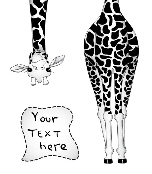 vector illustration of giraffe in black and white colors with place for your text - giraffe stock illustrations