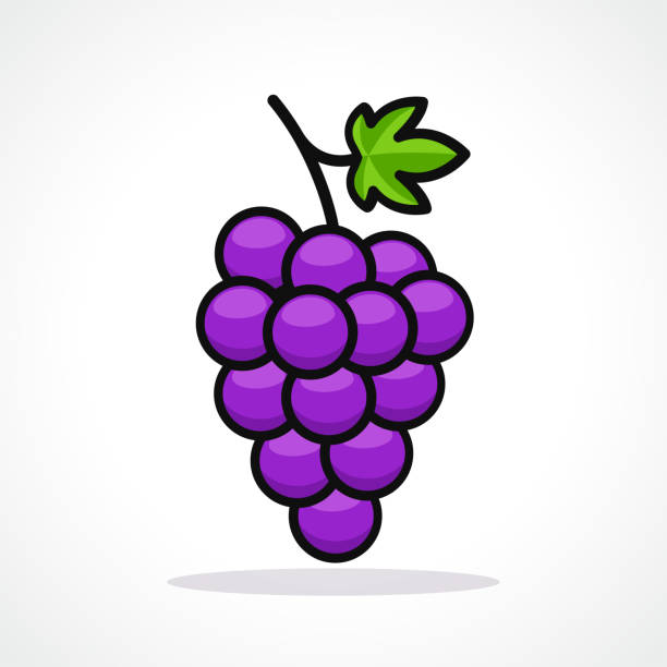 Vector illustration of grapes design icon Vector illustration of grapes on white background fruit clipart stock illustrations