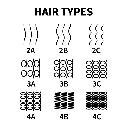 Vector illustration of hair types chart with all curl types, labeled. Curly girl method concept. Waves, coils and kinky hair