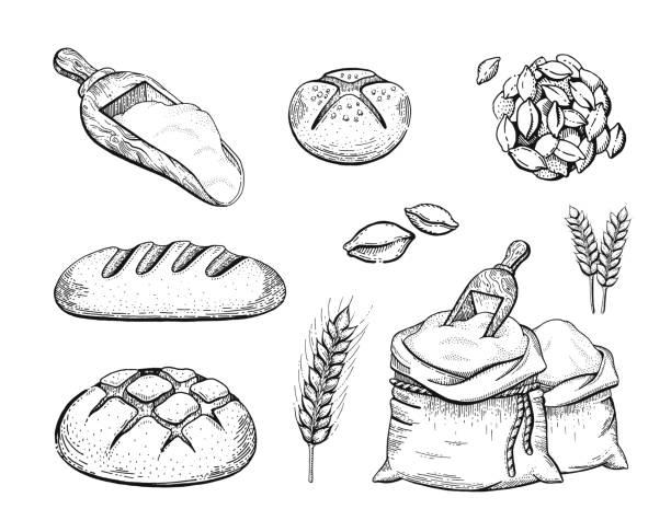 Vectores De Ilustración Pan Orejas De Trigo Y Bolsas De Harina E