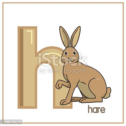 Vector illustration of Hare isolated on a white background. With the lower case H for use as a teaching and learning media for children to recognize English letters Or for children to learn to write letters Used to learn at home and school.