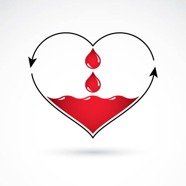 Vector illustration of heart shape with arrows and drops of blood. Blood circulation concept, rehabilitation creative symbol isolated on white. vector art illustration