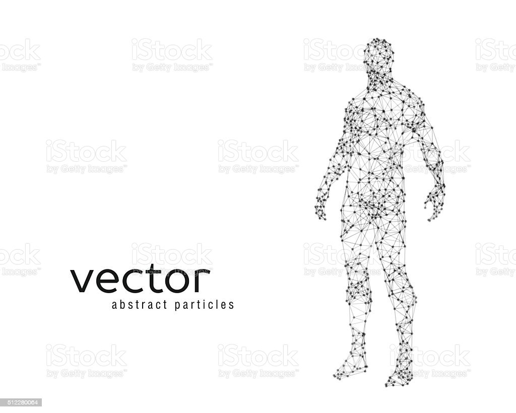 Vector illustration of human body vector art illustration