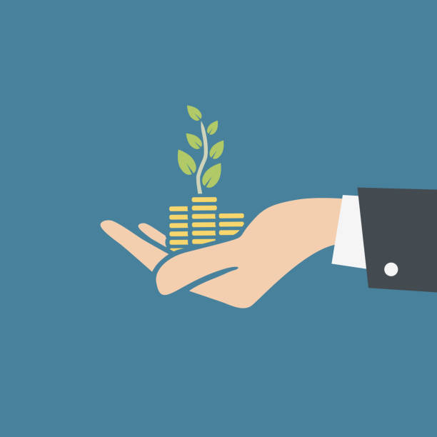 Vector illustration of human hand holding stacks of coins and growth plant. Transparent background, ready to use. vector art illustration