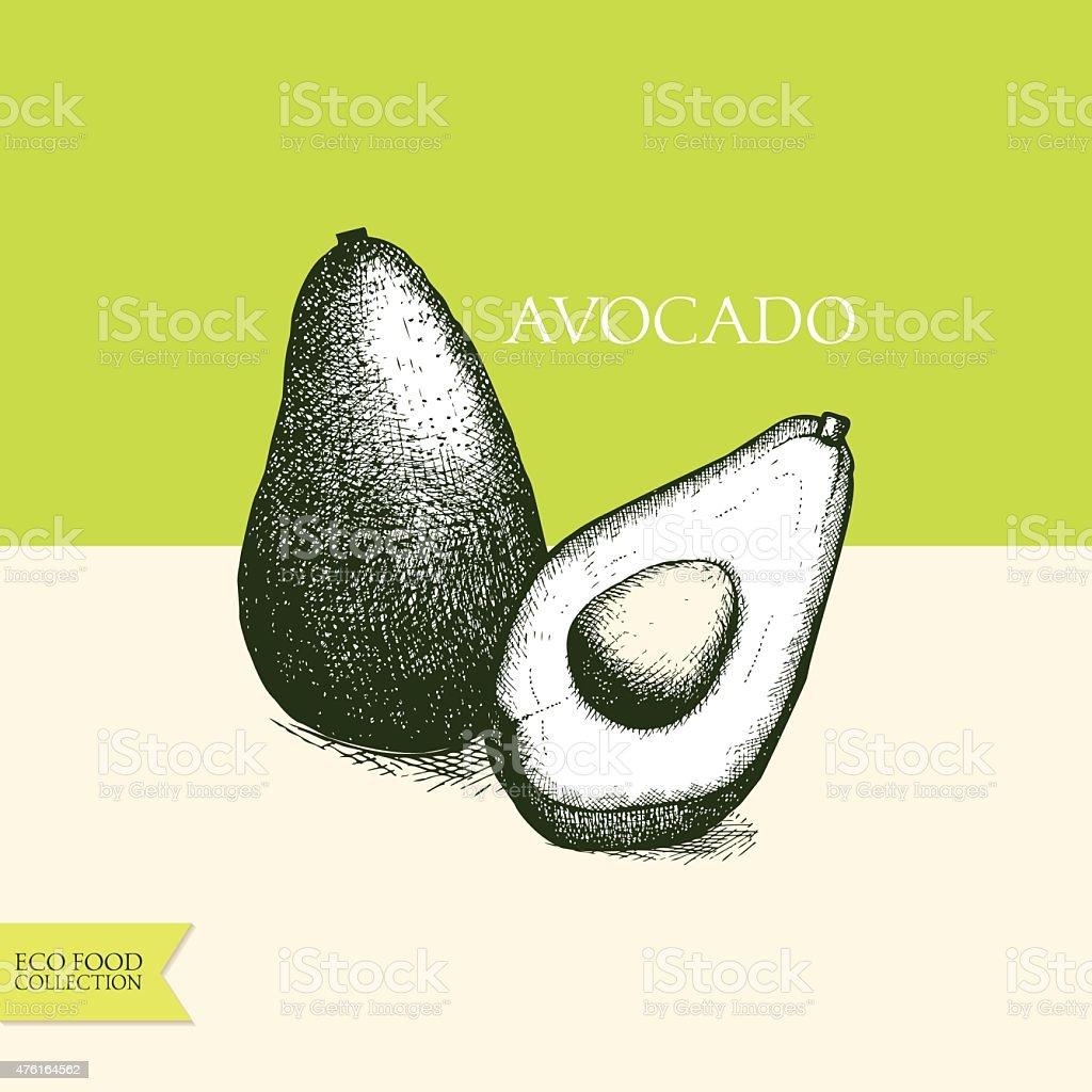 Vector illustration of ink hand avocado vector art illustration