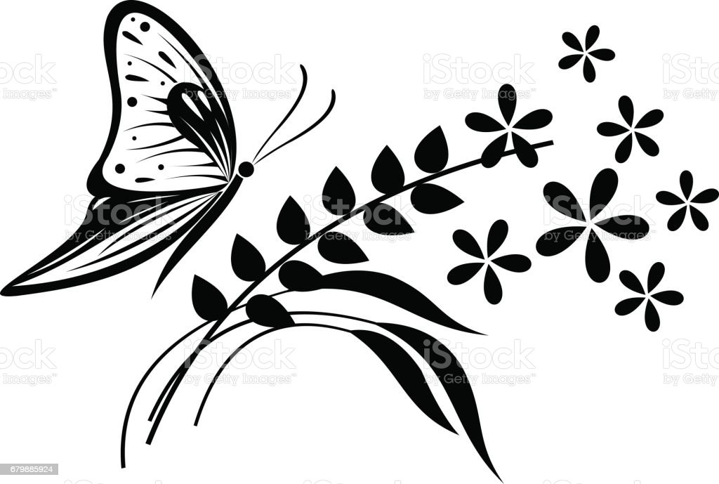 Vector Illustration Of Insect Black And White Butterfly Flowers And
