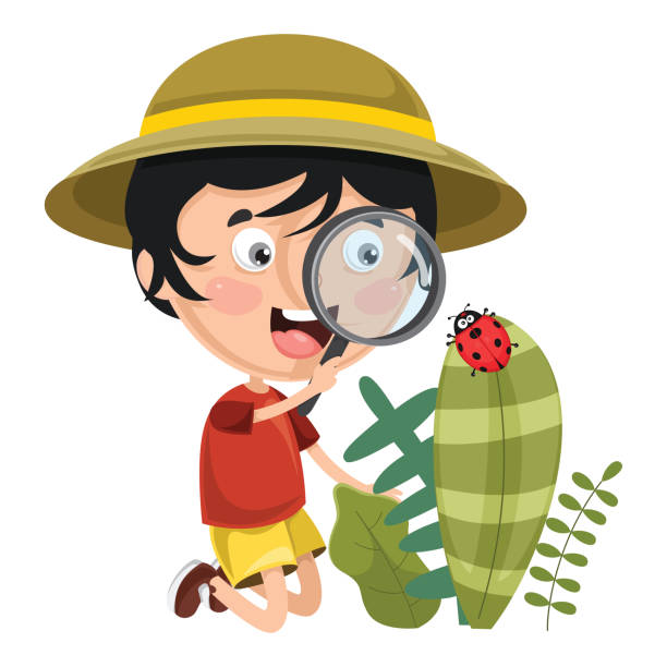 Vector Illustration Of Kid Using Magnifier Vector Illustration Of Kid Using Magnifier exploration stock illustrations