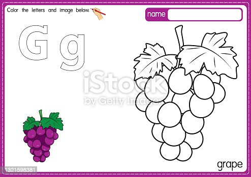 Vector illustration of kids alphabet coloring book page with outlined clip art to color. Letter G for Grape.