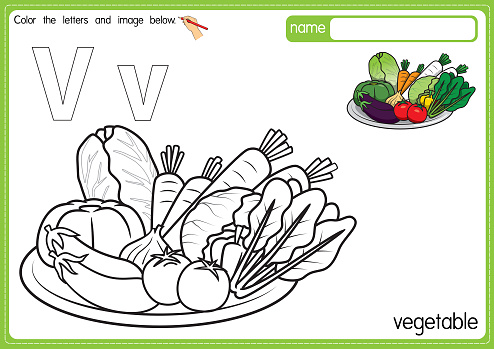 Vector illustration of kids alphabet coloring book page with outlined clip art to color. Letter V for Vegetable.